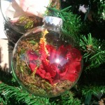Red Hibiscus Ornament